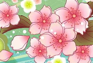 Activités de la fête des cerisiers en fleurs